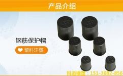 钢筋保护帽 线guan保护塞