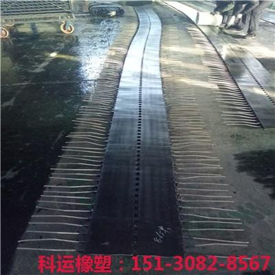 ECS型桥面伸缩缝连续装置埋入式透水式ECS伸缩缝装置新品推介5
