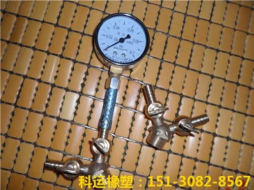 DN50-DN3000mm全口径管道堵水气囊 管道阻水气囊批发5