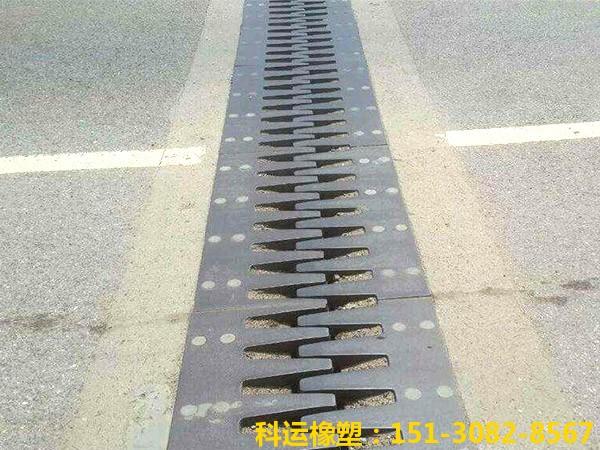 梳齿板桥梁伸缩缝公路桥梁梳齿板伸缩缝装置-科运橡塑国标正品SF梳齿五防伸缩装置3