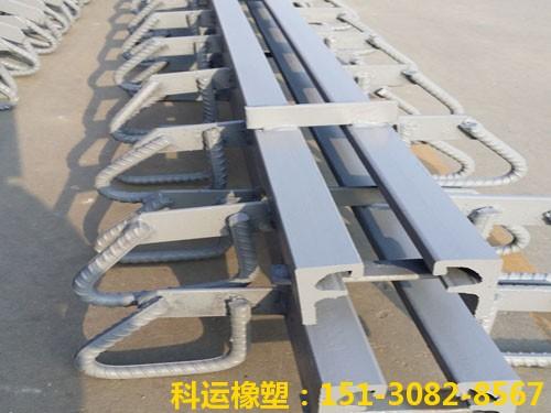 衡水科运路桥各种型号桥梁伸缩缝装置图集4