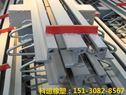 衡水科运路桥各种型号桥梁伸缩缝装置图集6