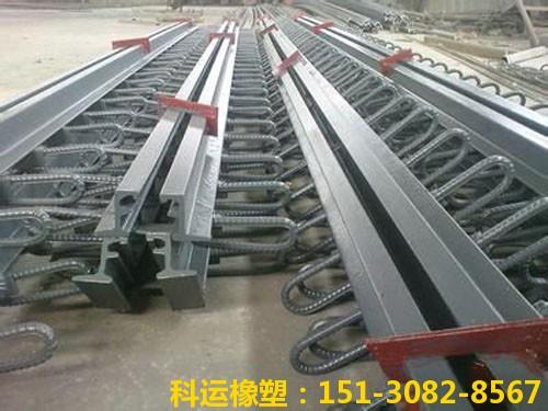 衡水科运路桥各种型号桥梁伸缩缝装置图集11