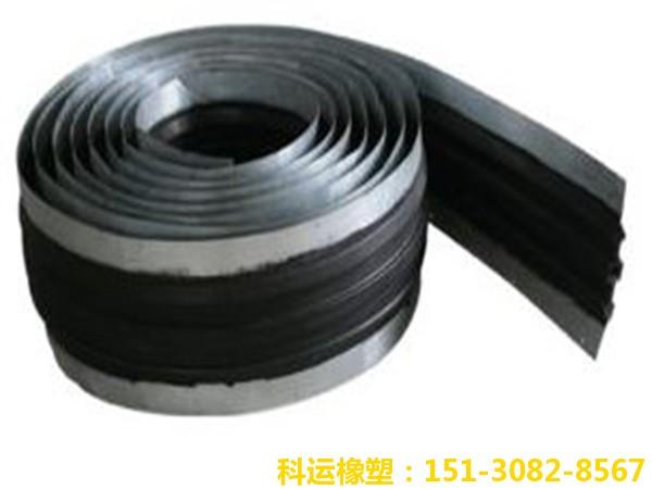 钢边式橡胶止水带3