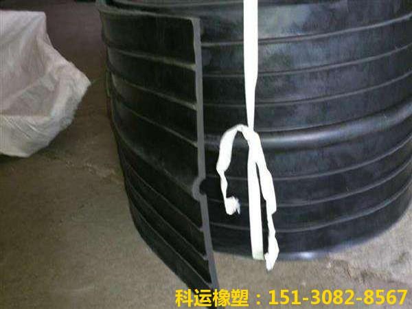 651型中埋式橡胶止水带2
