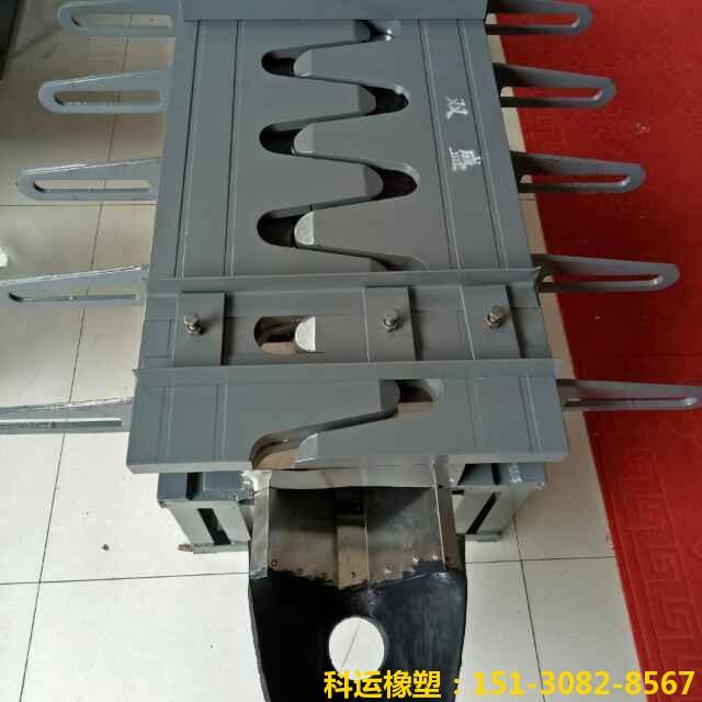 SF梳齿板式伸缩装置 科运橡塑GQF-MZL120型伸缩缝专家3