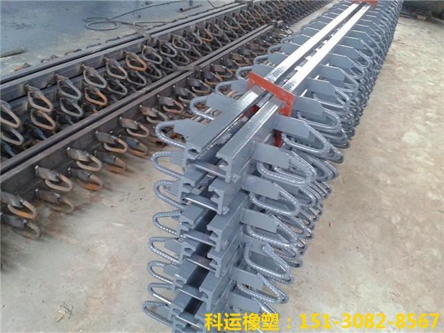 GQF-Z型和GQF-D型桥梁伸缩缝 D80型国产桥梁伸缩缝典范3