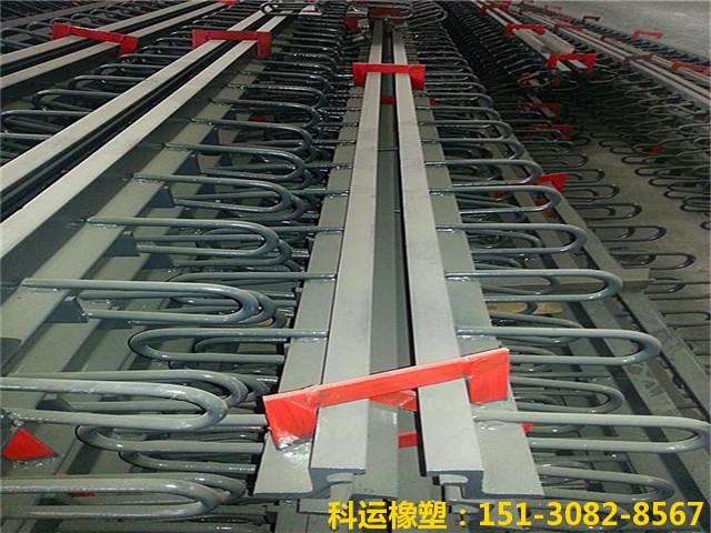 GQF-Z型和GQF-D型桥梁伸缩缝 D80型国产桥梁伸缩缝典范4