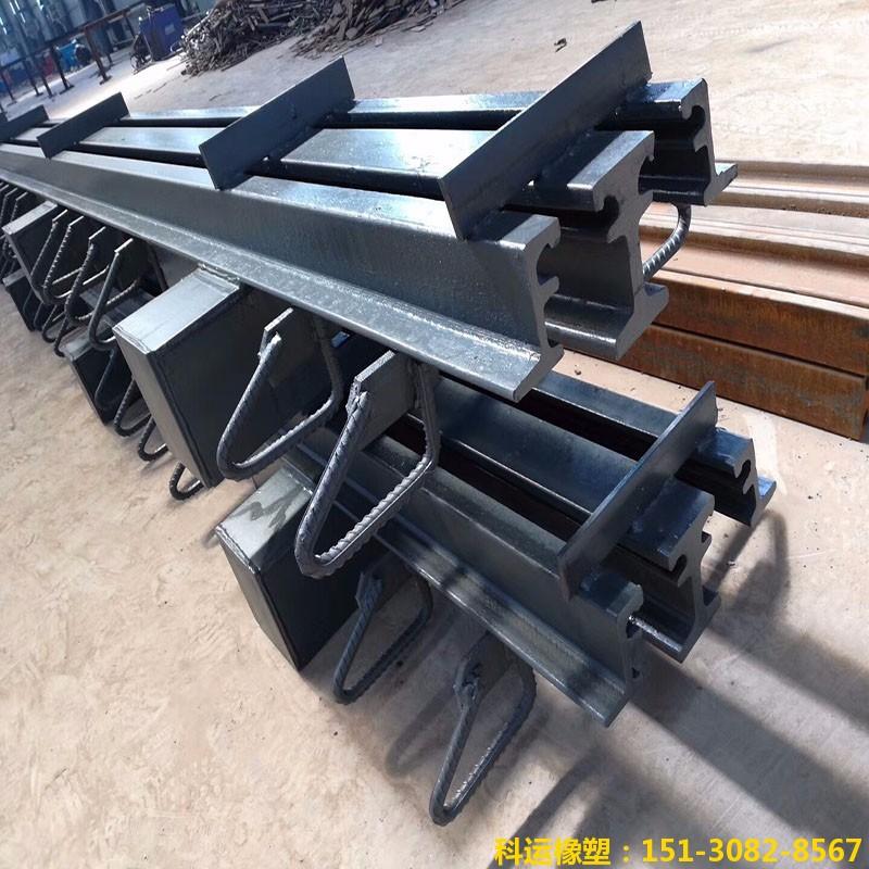 多组式模数式桥梁伸缩缝装置ZX桥梁伸缩缝专家企业1