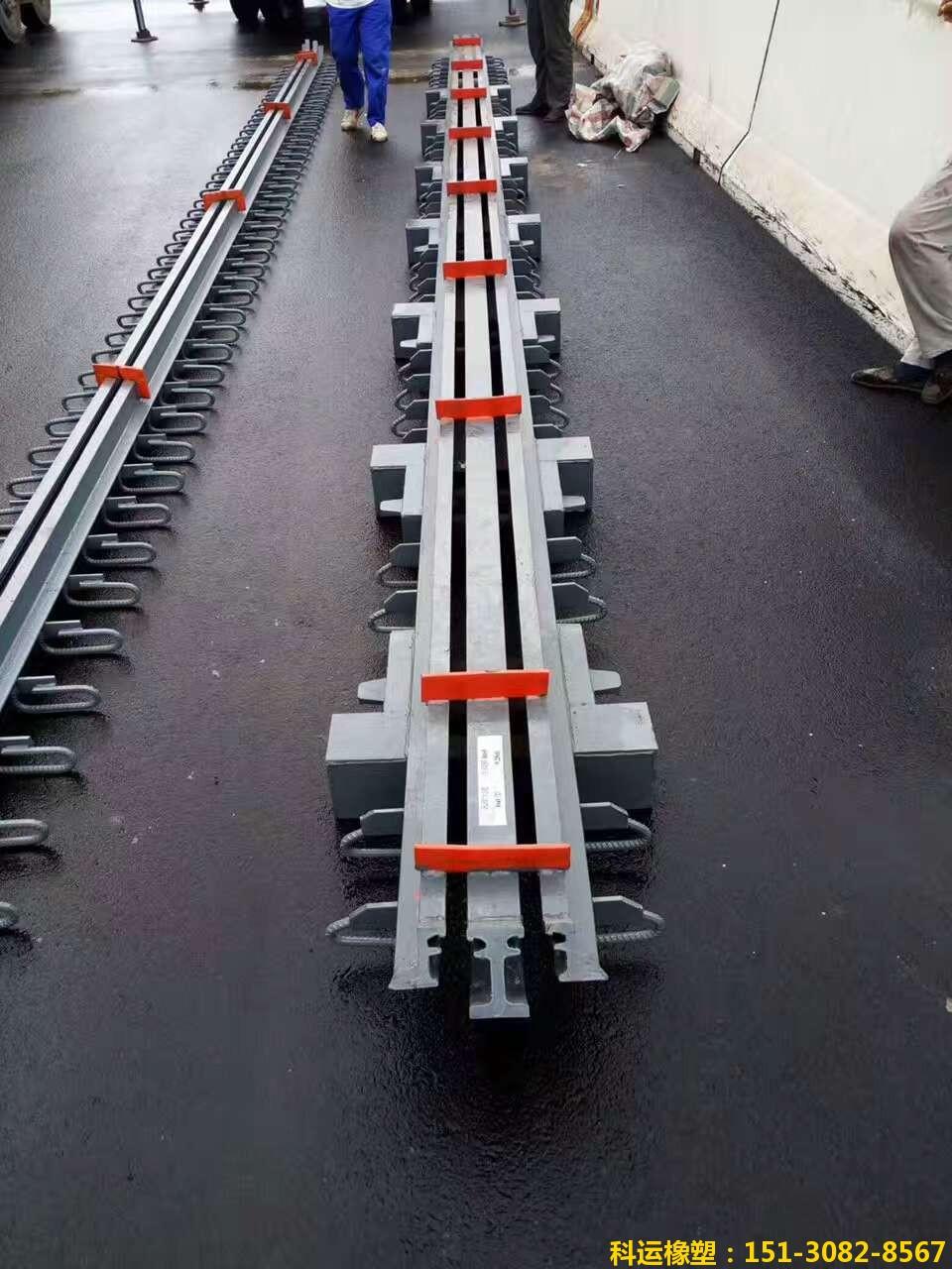 模数式D160型多组式伸缩缝装置 多向变位桥梁伸缩缝专家1