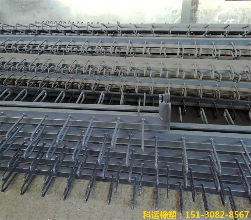 C80桥梁伸缩缝JT/T1591材质16MN Q345b桥梁伸缩缝厂家4