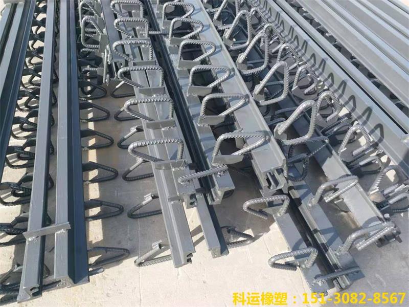 D160型模数式桥梁伸缩缝装置生产研发中心荣誉出品4