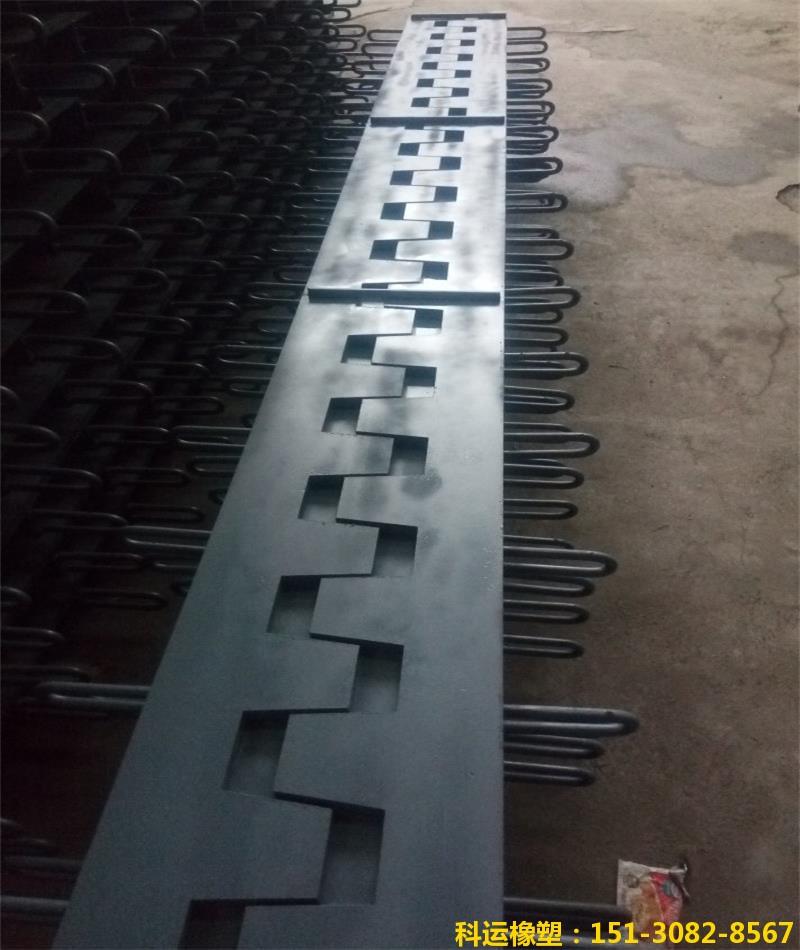 SSFB梳齿形桥梁伸缩缝 梳齿钢板桥梁伸缩缝研发中心1