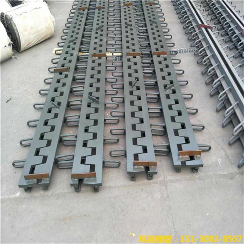 SSFB梳齿形桥梁伸缩缝 梳齿钢板桥梁伸缩缝研发中心5