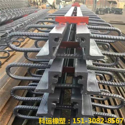 模数支承式桥梁伸缩装置-科运橡塑国标热轧型钢伸缩缝厂家1