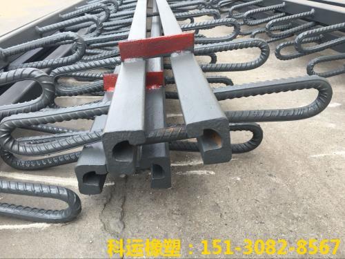模数支承式桥梁伸缩装置-科运橡塑国标热轧型钢伸缩缝厂家3
