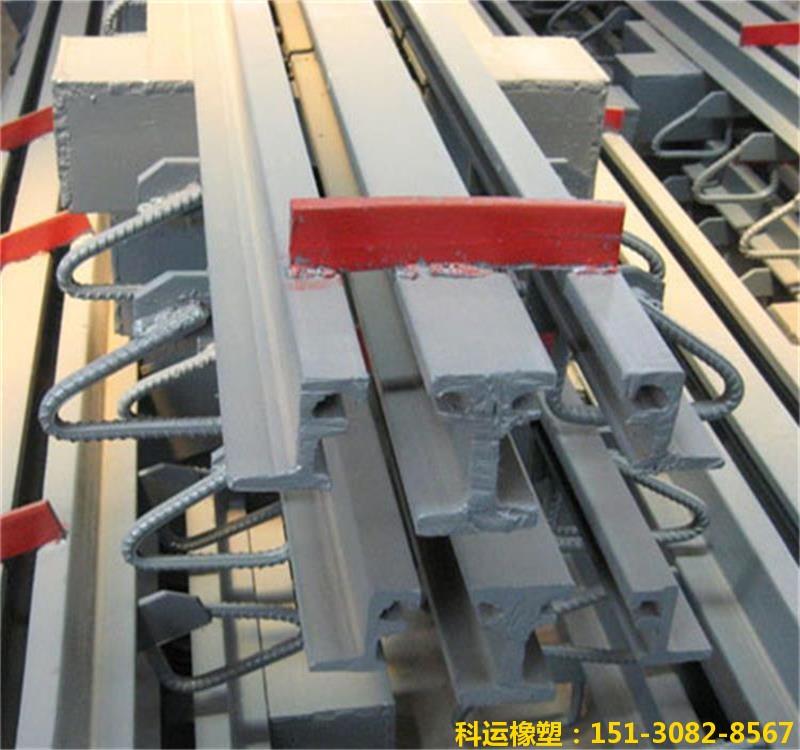 模数支承式桥梁伸缩装置-科运橡塑国标热轧型钢伸缩缝厂家5