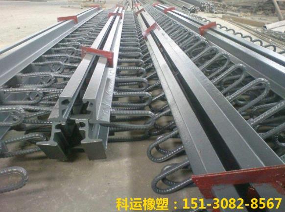 华北地区桥梁伸缩缝装置研发中心 桥梁伸缩缝系列产品推介2