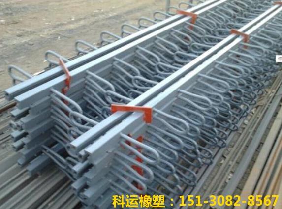 华北地区桥梁伸缩缝装置研发中心 桥梁伸缩缝系列产品推介3