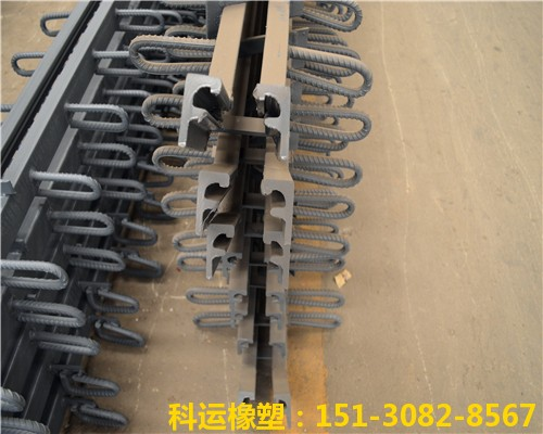 GQF-E型桥梁伸缩缝 异型钢材为16Mn桥梁专用钢材研发中心2