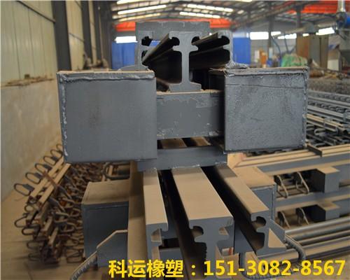 Z型钢80型模数式伸缩缝 RG型桥梁异型钢伸缩缝研发中心1