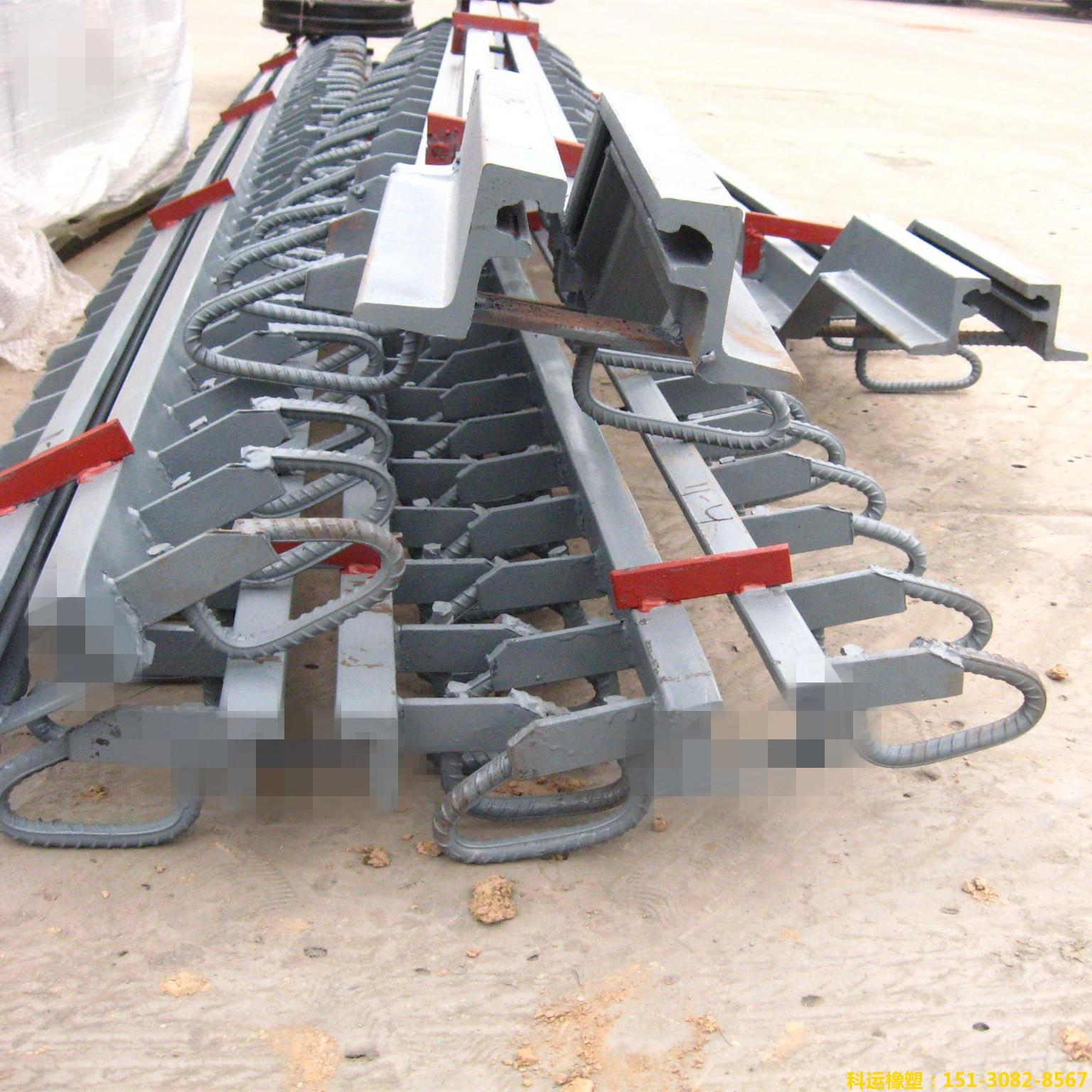 Z型钢80型模数式伸缩缝 RG型桥梁异型钢伸缩缝研发中心3