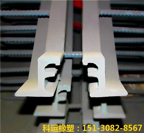 斜交桥梁专用伸缩缝装置 科运良品斜交桥梁伸缩缝厂家批发2