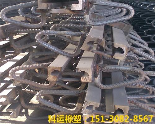 斜交桥梁专用伸缩缝装置 科运良品斜交桥梁伸缩缝厂家批发5