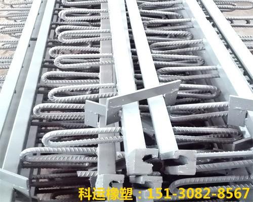 斜交桥梁专用伸缩缝装置 科运良品斜交桥梁伸缩缝厂家批发8