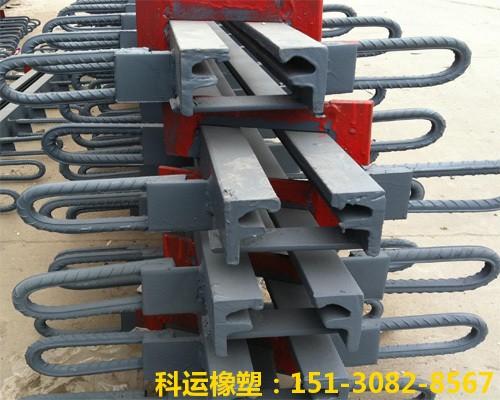 GQF-C型、GQF-Z型、GQF-L型、GQF-F型桥梁伸缩缝厂家3