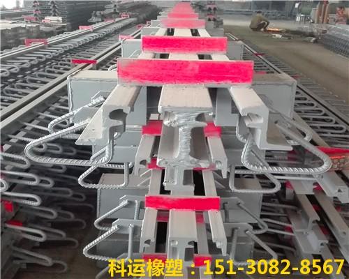 160型桥梁伸缩缝装置厂家批发