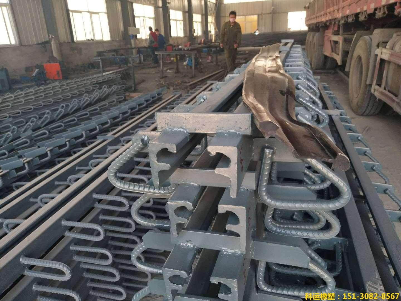 C型F型E型Z型RG型160型桥梁伸缩缝装置-专业级路桥配件厂家4