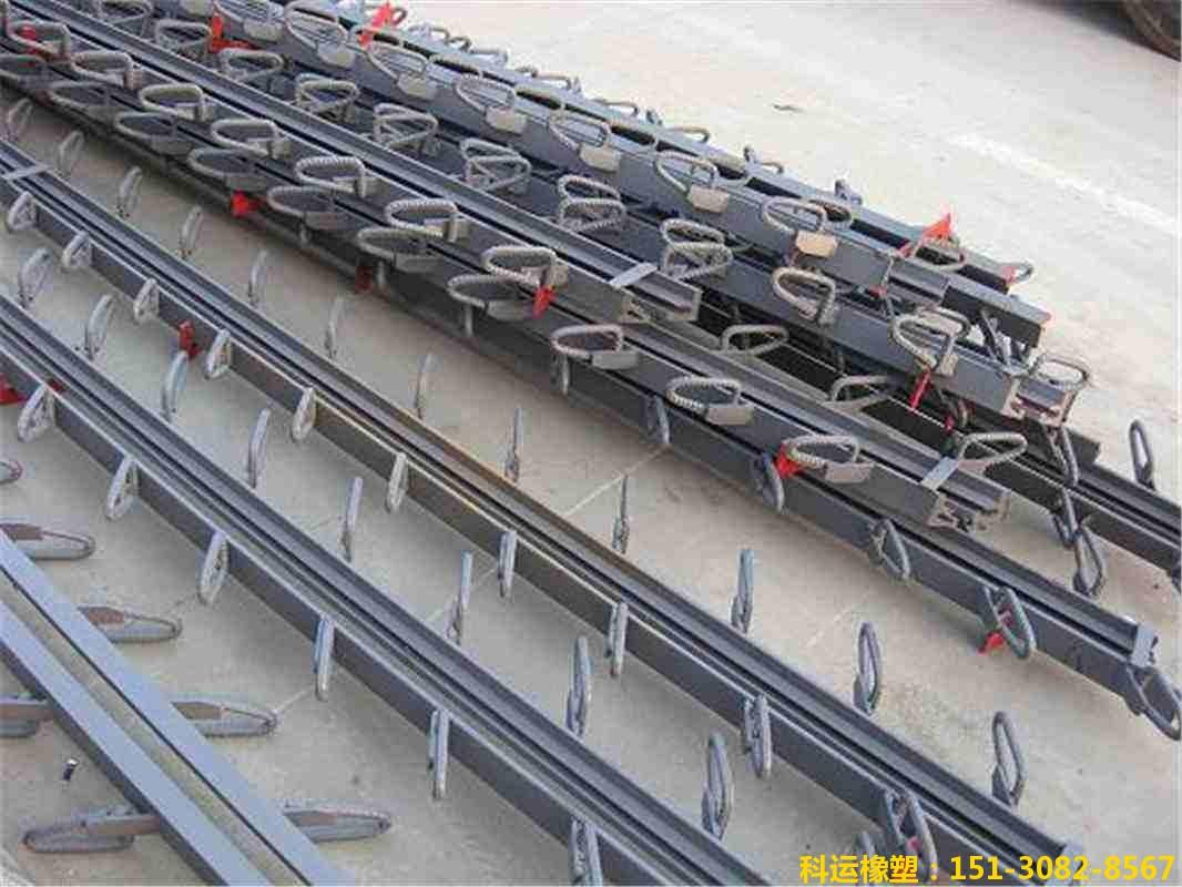 斜交单组式桥梁伸缩缝装置图集