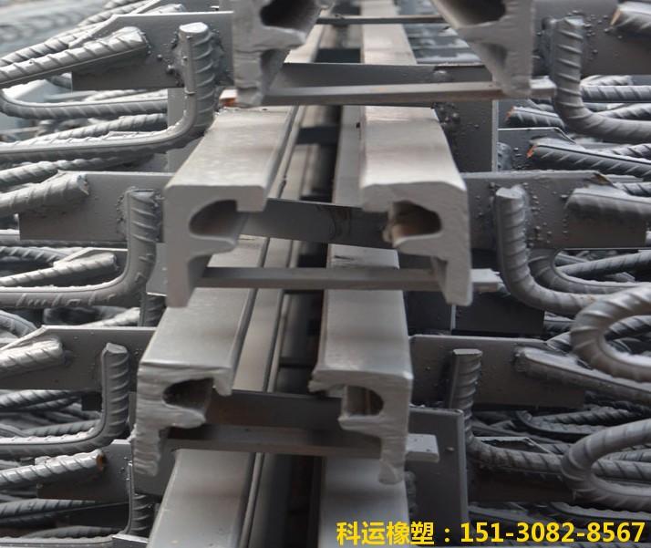 国标F40、60、80型单组式伸缩缝精品图集