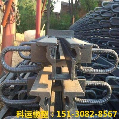 桥梁伸缩缝型号分类 MZL240型、MZL360型、梳齿型伸缩缝1
