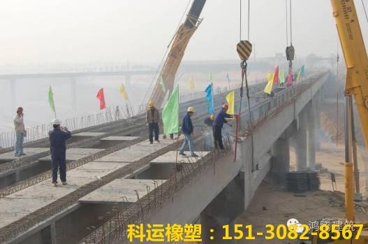桥梁伸缩缝装置的常见病害和安装质量控制措施1