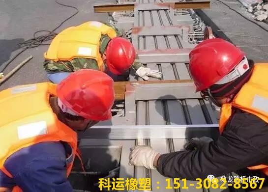 桥梁伸缩缝施工技术大讲堂之质量控制(二)2