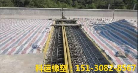 桥梁伸缩缝施工技术大讲堂之质量控制(二)1