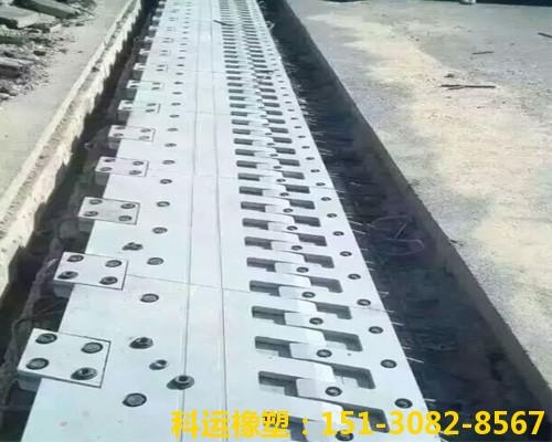 单组桥梁伸缩缝