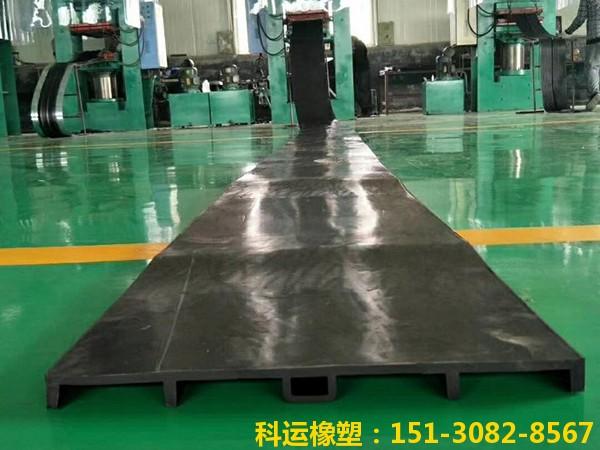 橡胶止水带系列产品-中埋式背贴式钢边橡胶止水带展销2
