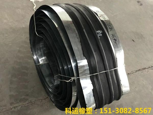 橡胶止水带系列产品-中埋式背贴式钢边橡胶止水带展销3